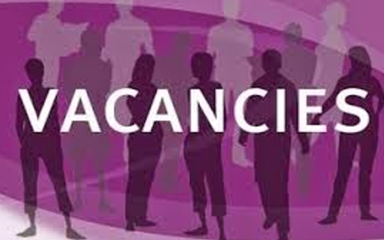 DSP VACANCIES – EUFA Vienna opens call for 3 positions